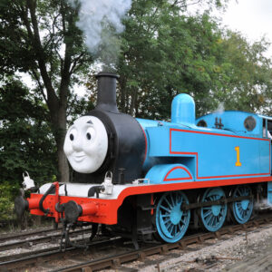 thomas-tank-engine-thorne-experience