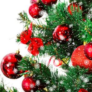 Christmas tree thorne travel