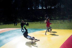 mabie farm park blog thorne experience ayrshire