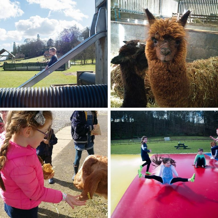 A Day of Adventure & Play at Mabie Farm Park - Fully Booked