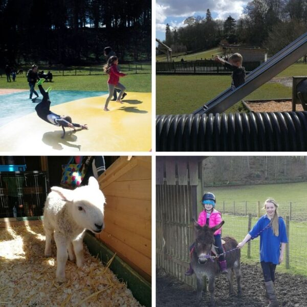 A Day of Adventure & Play at Mabie Farm Park Thorne Travel Experience 3